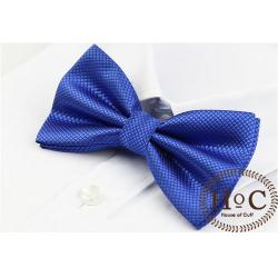 BLUE BRIGHT BOW